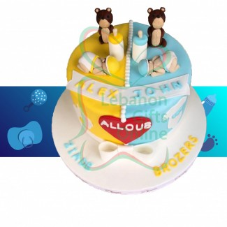 Twin New Born Baby Cake