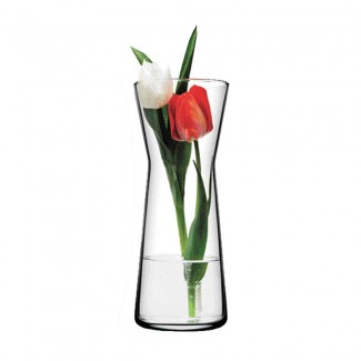 The Red and White in a Vase