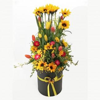 Sunflower special