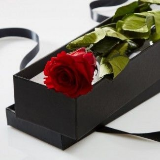 Single Red Rose in a black box
