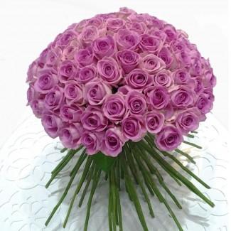 Pink Princess 200 pink roses