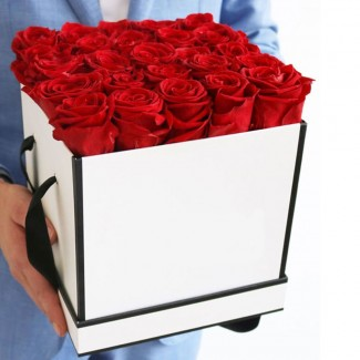 20 Red Rose in White square box