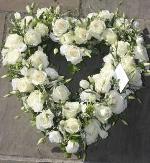 White Heart Roses