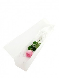 White Single Rose Box