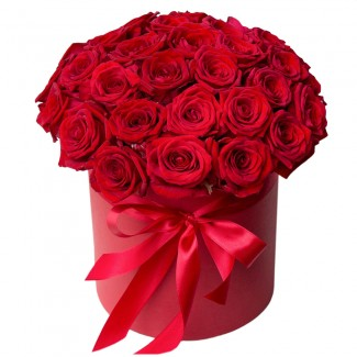 Red Roses in Red Elegant Bucket