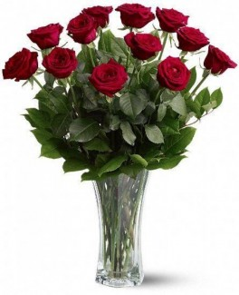 Elegant 12 Red Roses