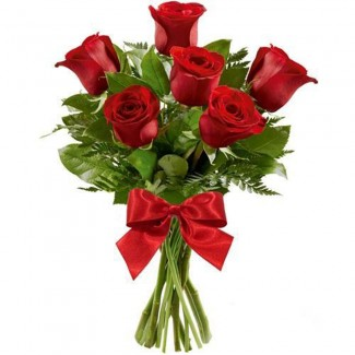 Simple Love Red Roses
