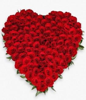 100 red roses heart shape